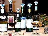 Ceramic Wine Cap(セラミック ワイン キャップ)使用例