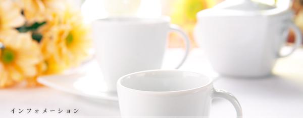 窯主のきまぐれブログ/有田焼 抗菌コート 陶磁器 通販